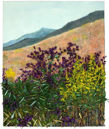 Ironweed with Goldenrod